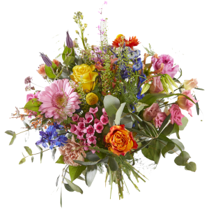 Bloemen splendeur
